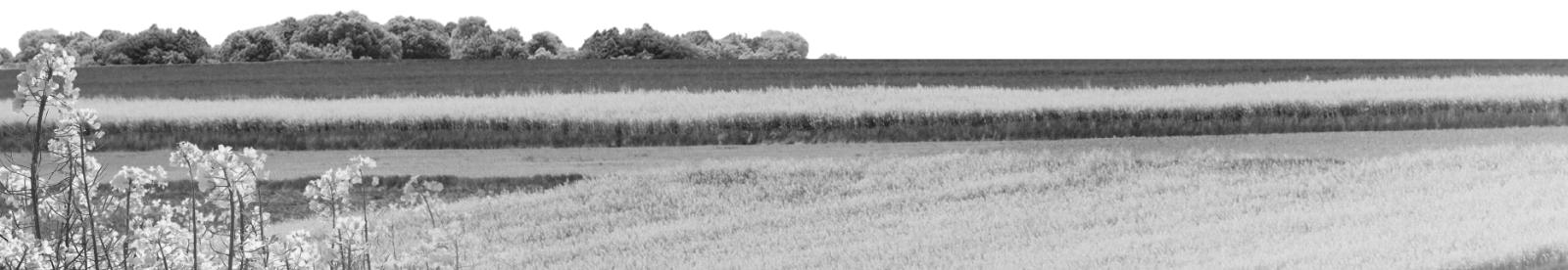 Oferta Warmińsko-Mazurskiego Ośrodka Doradztwa Rolniczego